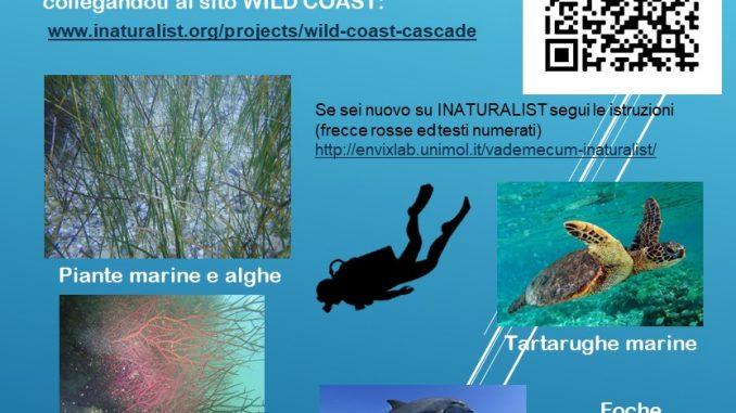 locandina-cascade_campagnainatur