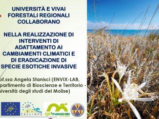 vivai_biodiversitia